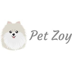 Pet Zoy
